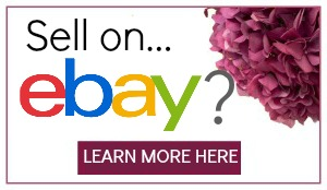 make-money-from-home-with-ebay