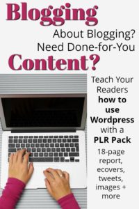 WordPress PLR Done-For-You Content